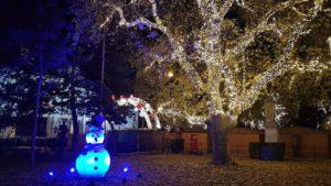 Scintillements et couleurs devant le Rathaus de Vienne avant Noel blog Scribendo