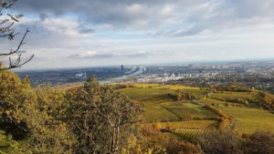 Wiener Wald Kahlenberg blog Scribendo